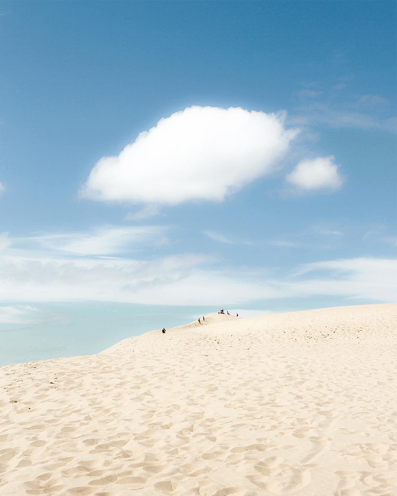 Images : 1番目の画像 - 「ミモザの香りと砂丘に導かれ、 フランスにおけるケープ・コッド カップ・フェレ半島へ」のアルバム - T JAPAN:The New York Times Style Magazine 公式サイト