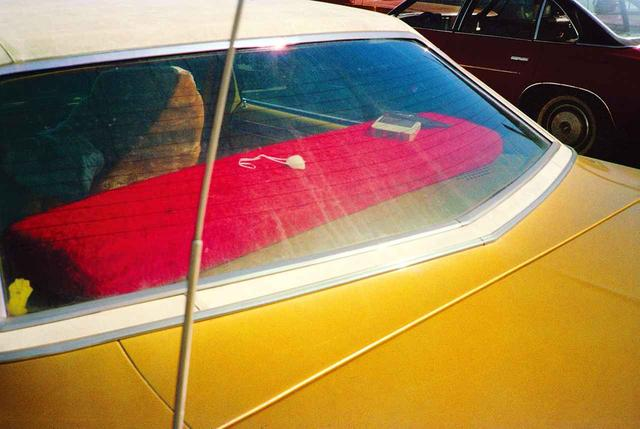 画像4: PHOTOGRAPH BY WILLIAM EGGLESTON