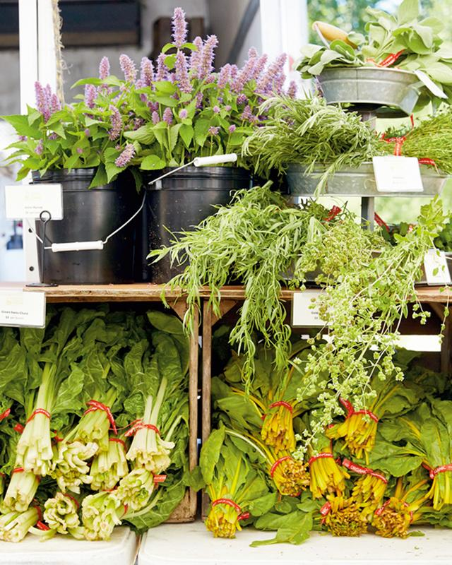 画像: 「カリクーン・ファーマーズ・マーケット」に並んだ地元産のラベンダー、ハーブ、ビートの若葉