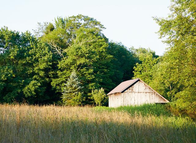 画像: サリバン郡の農場に広がる草地