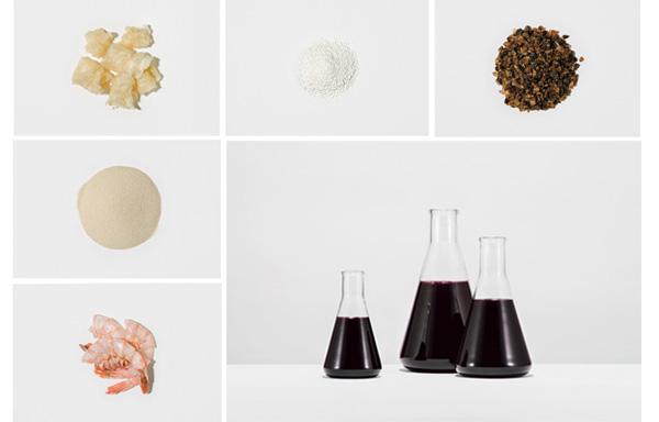 """Images : 2番目の画像 - 「""""自然派ワイン""""の魅力に とらわれた人々」のアルバム - T JAPAN:The New York Times Style Magazine 公式サイト"""