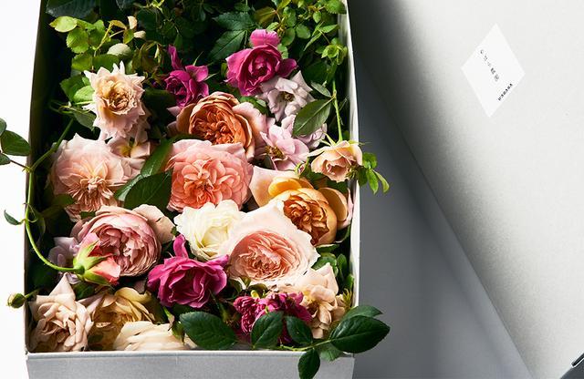 画像: 「わばら農園」¥12,000 葉や茎も自然のままの状態で、わばらたちの育つ農園をありのまま再現したようなギフトボックス。季節によっては、わばらと共生する草花を一緒に入れられていることもあるそう。摘みたてのような瑞々しい香りを楽しむことができる
