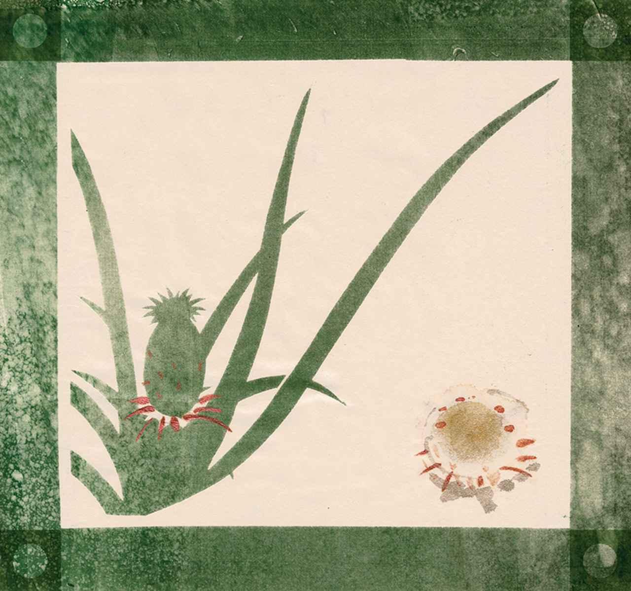 Images : 1番目の画像 - 「連載 Vol.3 コレクションは持ち主を語る。 トリー・バーチのボタニカルアート」のアルバム - T JAPAN:The New York Times Style Magazine 公式サイト