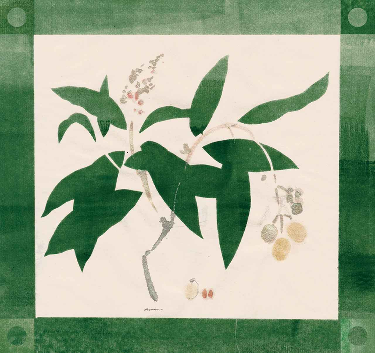 Images : 3番目の画像 - 「連載 Vol.3 コレクションは持ち主を語る。 トリー・バーチのボタニカルアート」のアルバム - T JAPAN:The New York Times Style Magazine 公式サイト