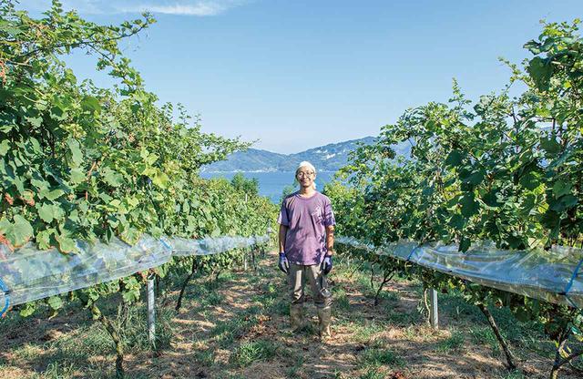 画像: 〈大三島みんなのワイナリー〉でワイン醸造に取り組む川田さんも移住者。昨年、初のワイン「島紅」が試験的な委託醸造で完成した ほかの写真をみる