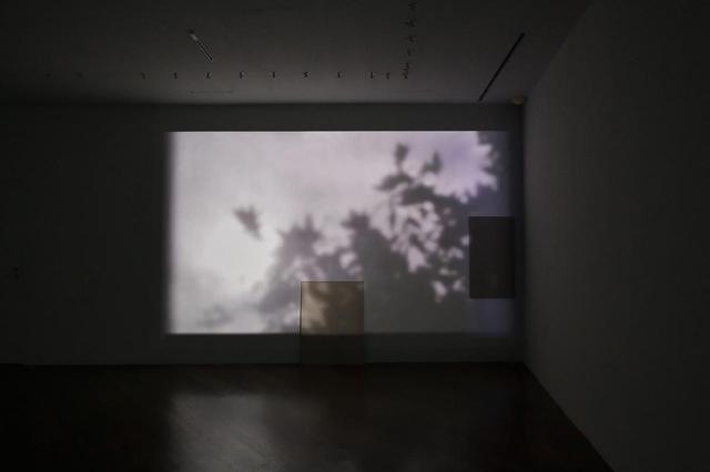 画像: 木漏れ日を撮った映像作品をプロジェクターで投影。今回、リーが撮影した映像素材のほとんどは無音。ただし、この部屋には扇風機が置かれており、その回る音が不思議と映像とマッチしている PHOTOGRAPH BY SHIGEO MUTO ⓒLEE KIT, COURTESY THE ARTIST AND SHUGOARTS ほかの写真をみる