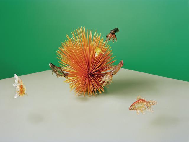 画像: 手塚新理による飴細工。(左から)金魚(ピンポンパールスケール)、サバ、 金魚(イエローコメット)、 タコ、イカ、金魚(オレンジコメット)。プラスチック製の彫刻(中央)はレイチェル・ゴールドスミス作