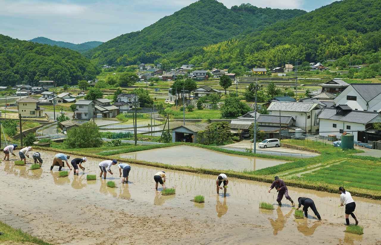 """Images : 2番目の画像 - 「""""付加価値のある酒""""で未来を拓く。 「日本酒応援団」の挑戦<後編>」のアルバム - T JAPAN:The New York Times Style Magazine 公式サイト"""