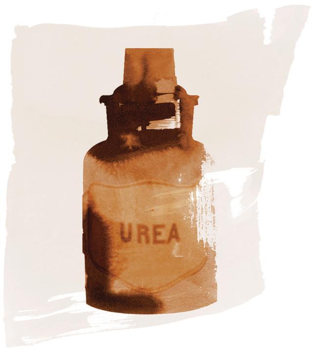 画像: ガラスボトル/ウルグアイ、Urea(尿素)、年代不詳 ほかの写真を見る