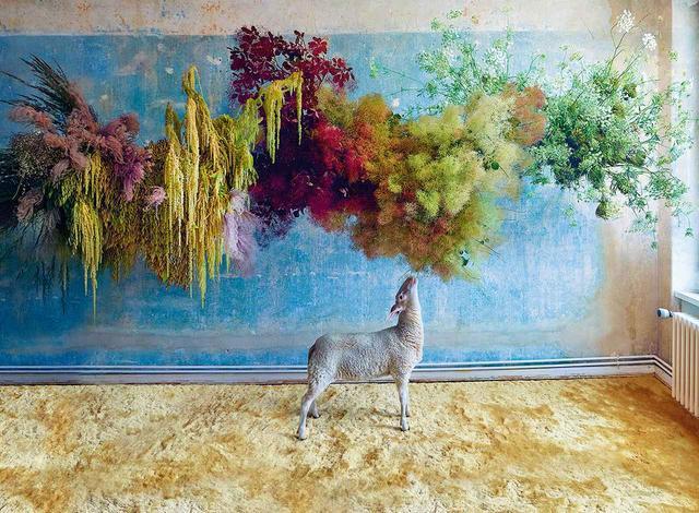 画像: これまで敬遠されてきた、野性的なタンポポ、侵略的なイタドリ、トゲのあるイラクサが脚光を浴びている。雑草を使った雲形アレンジメントは、ベルリンのフローリスト「メアリー・レノックス」のルビー・バーバーのトレードマークだ。 写真は複数のアレンジメントを組み合わせたもの。左から、ヒモゲイトウ(紐鶏頭)と生や乾燥の野草のアレンジ。日陰の存在から、温室育ちの高級生花にも負けない存在になったハグマノキをふんだんに使った作品。そして「アン女王のレース」とも呼ばれるノラニンジンの花