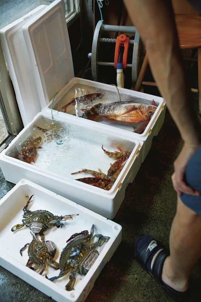 画像: 高祖鮮魚店へは毎朝、8時すぎに仕入れへ。この朝、店頭に並んだのは 鯛、ベカ(ベイカ)、ガラ海老、メバルなど ほかの写真を見る