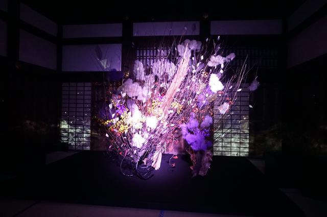 画像: 重要文化財「御台所」の広間の闇に浮かび上がる作品「秋嵐」は、「伝統と先進アート」の組み合わせによる斬新な作品。変化するいけばなの表情がなんとも魅惑的 PHOTOGRAPH BY TAKAKO OHARA