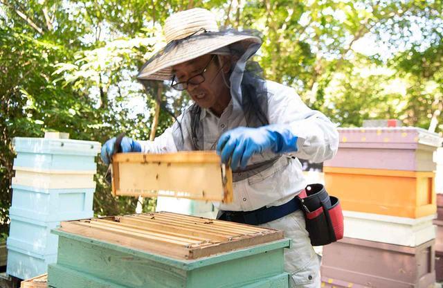 画像: 長生(ちょうせい)博行 自然栽培で柑橘類を育てるほか、独学でオーガニック養蜂を営む