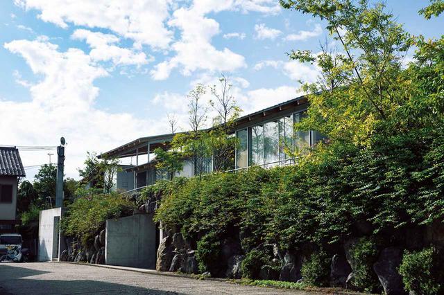 画像: オーナーの意向で、敷地に対し余裕をもって設計された建物は周囲を緑に囲まれ、家と家のあいだの通路や中庭にも、建物に交ざり込むように樹々が植えられている。こうした植栽のデザインも妹島和世建築設計事務所が行なった ほかの写真をみる