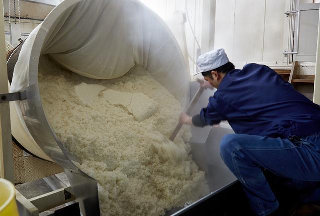 画像: 100℃近い米を蒸し器から取り出し、広げて冷やす。蒸し時間や蒸し上がり具合が、酒の香りや味わいを大きく左右する