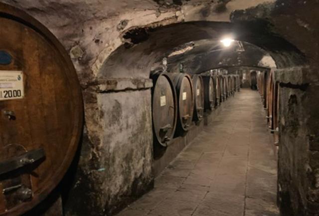 画像: 修道院の建物の地下に広がる、古色蒼然たるワインセラー。修道士たちが起居した部屋など、歴史ある建物はワイナリーツアーで見学が可能だ(要予約)。ここから数キロ離れた場所にある醸造所はうってかわって最新の設備を備え、醸造のエキスパートらによって緻密なワインづくりが行われている PHOTOGRAPH BY JUNKO ASAKA