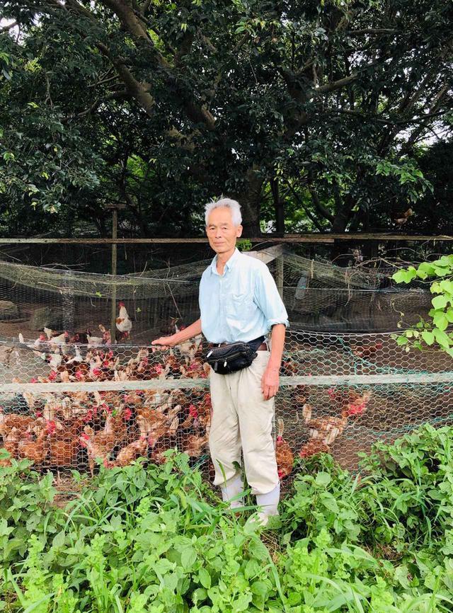 画像: 「おいしいものはすべての人の心をひとつにします」と語る、生産者の大松秀雄。太陽光と自然の風が入る自然開放型鶏舎にて。鶏は国産種の「ゴトウさくら」と「もみじ」を飼育している。 PHOTOGRAPH BY YUMIKO TAKAYAMA