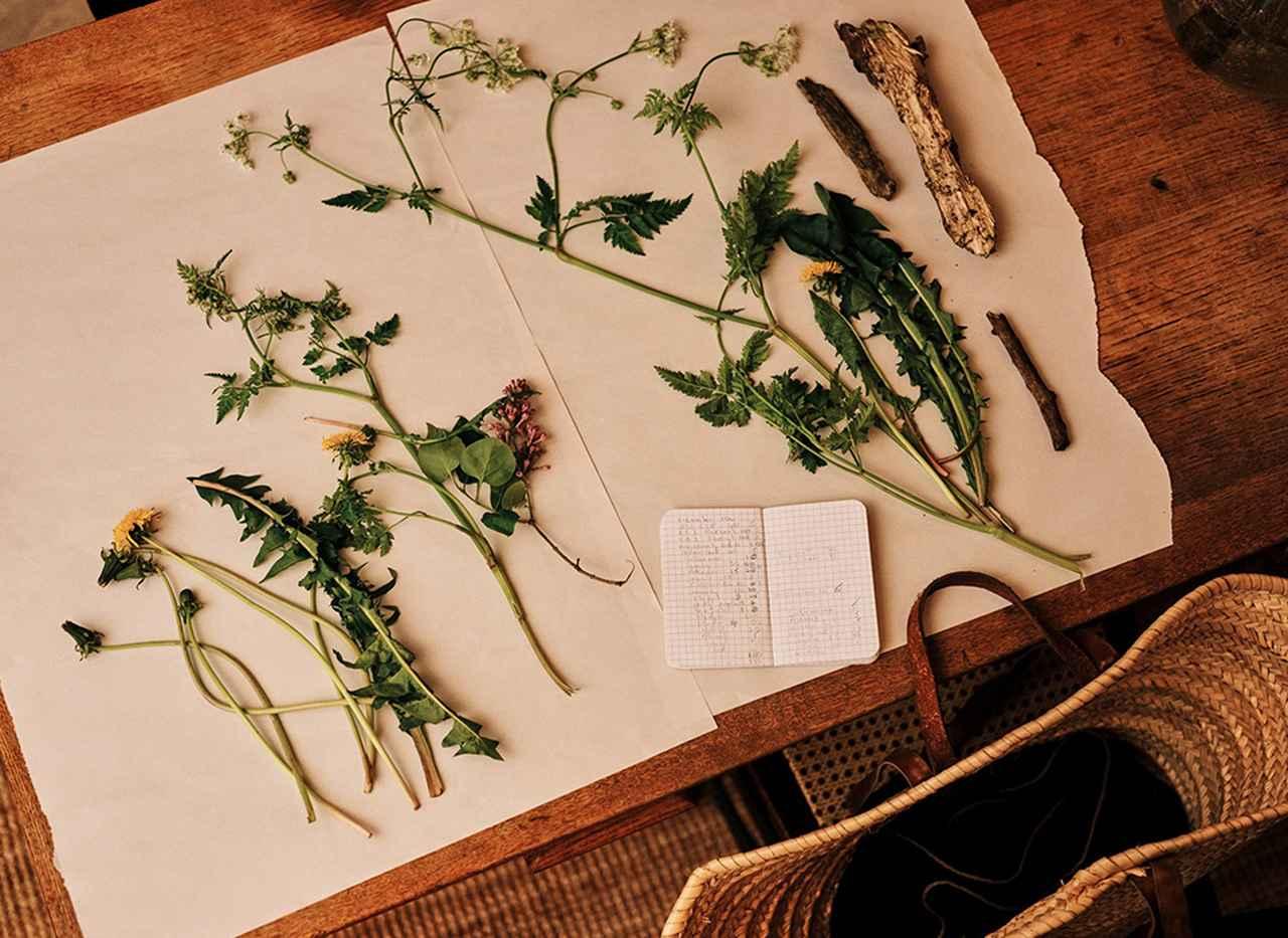 Images : 9番目の画像 - 「「パフューマー H」の調香師 リン・ハリスが香りをつくるまで」のアルバム - T JAPAN:The New York Times Style Magazine 公式サイト