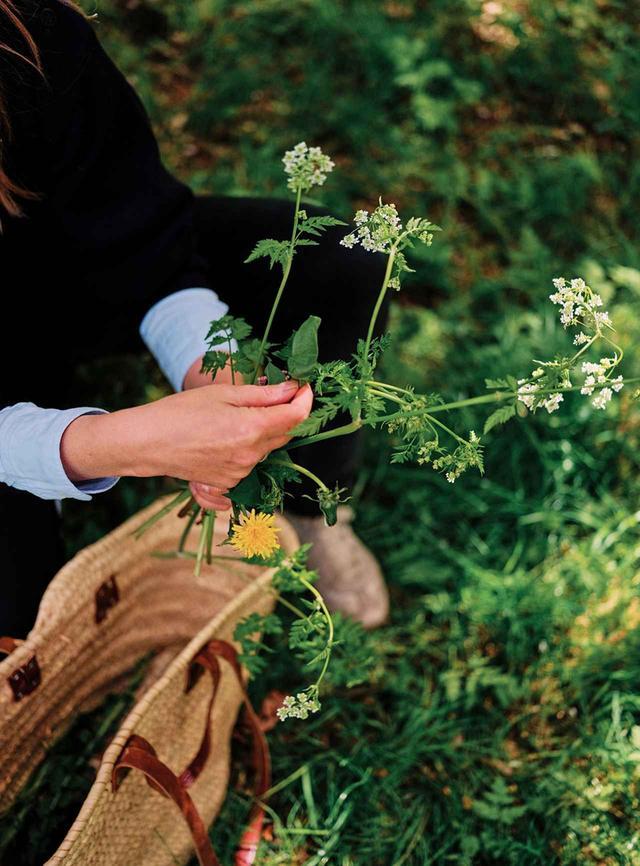 画像: 「植物採集は私にとってとても大切なこと」と語るハリス。彼女のショップとオフィスは、コケや樹皮、花やシダなど、自然の中で見つけたあらゆるもので飾られている。そういったものすべてが、彼女の制作過程において嗅覚を刺激する材料となるのだ ほかの写真をみる