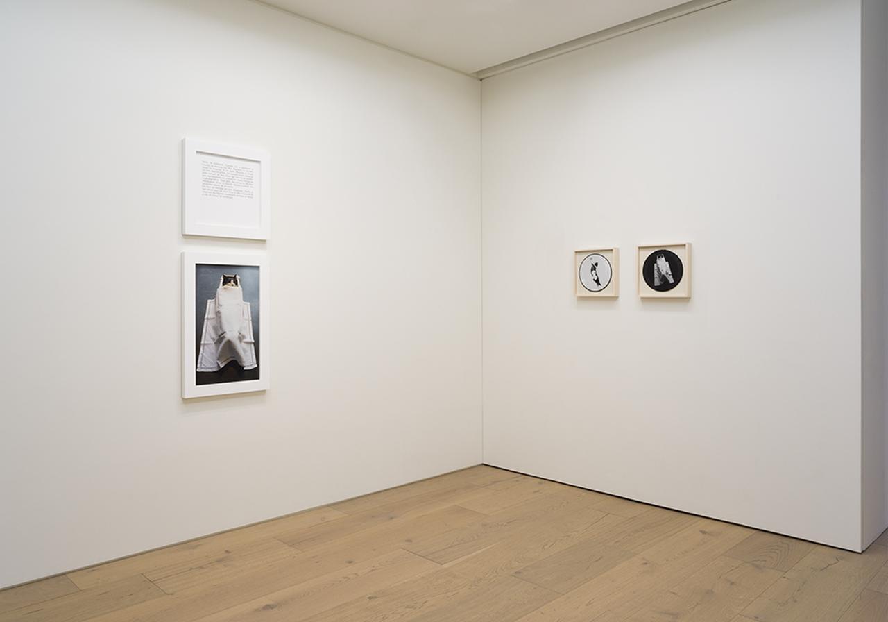 Images : ソフィ・カル個展 『私の母、私の猫、私の父、この順に』『なぜなら』