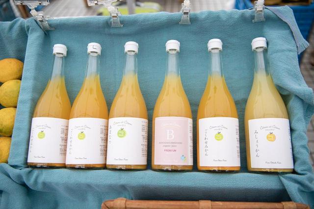 画像: 早生みかんや温州みかん、ぽんかん、いよかん、甘夏、文旦、みしょうかんのジュース。それぞれの柑橘の個性が生きている