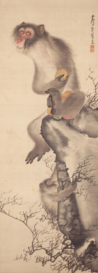 長沢芦雪 《猿猴弄柿図》