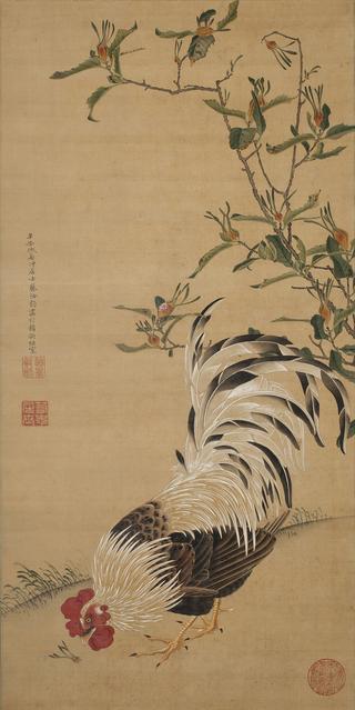 伊藤若冲 《梔子雄鶏図》