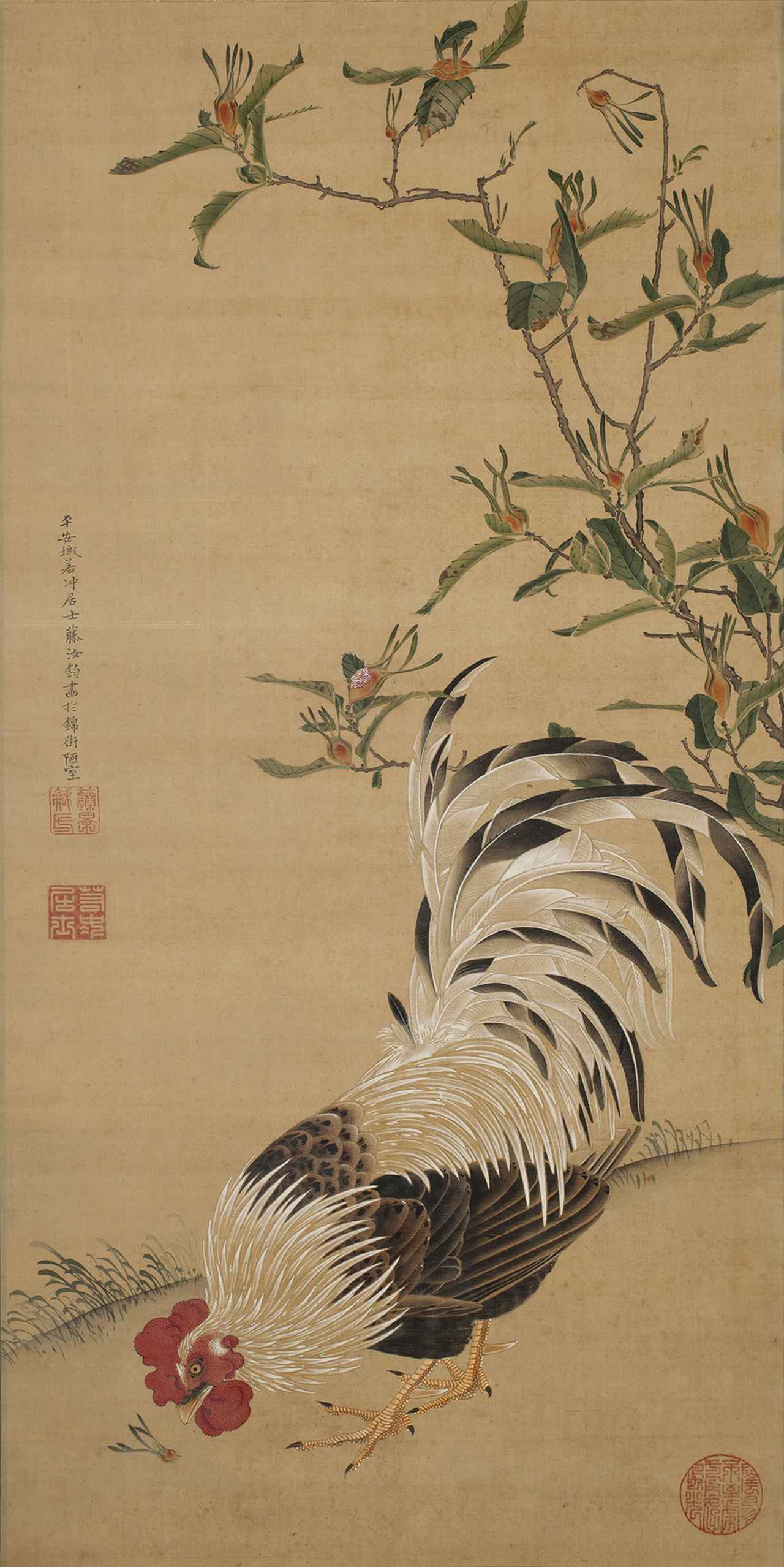 Images : 伊藤若冲 《梔子雄鶏図》