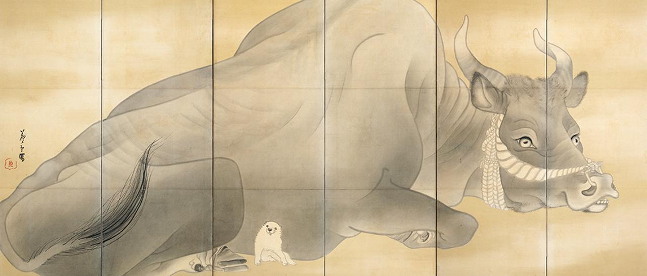 Images : 長沢芦雪 《白象黒牛図屏風》(左隻)