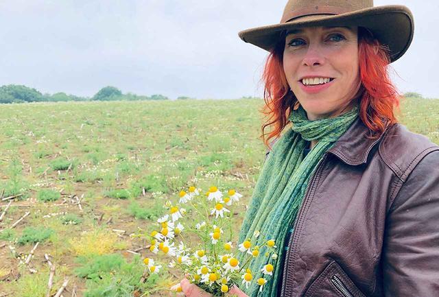 画像: パブリック・フット・パスを歩き、カモミールの畑を通った