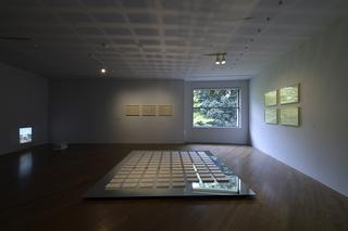 『The Nature Rules 自然国家:Dreaming of Earth Project』|原美術館