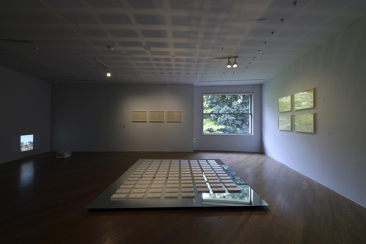 Images : 『The Nature Rules 自然国家:Dreaming of Earth Project』|原美術館