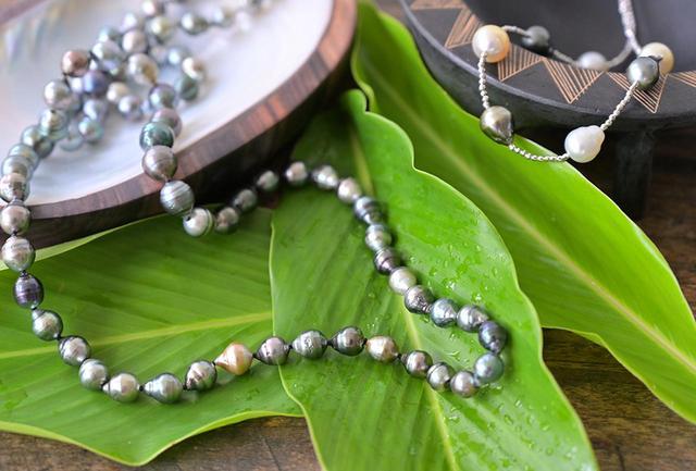 画像: 山、森、川、海へと連なる恵みを受けて黒真珠は輝きを放つ