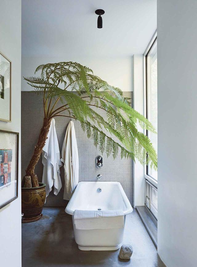 画像: メインの浴室。オーストラリア産のシダの木がコーラー社製のバスタブを覆うように置かれている