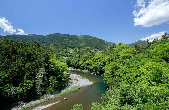 画像: 濃い緑に包まれる宿「清流の宿 おくたま路」が中央に見える。清流は多摩川の源流。初夏はアユ釣りも解禁になる