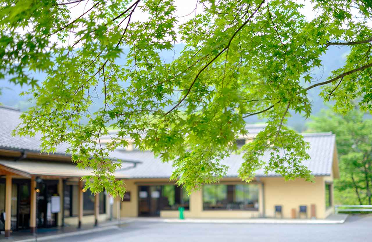 Images : 2番目の画像 - 「せきね きょうこ 連載 新・東京ホテル物語<Vol.44> 「東京・青梅石神温泉  清流の宿 おくたま路」」のアルバム - T JAPAN:The New York Times Style Magazine 公式サイト