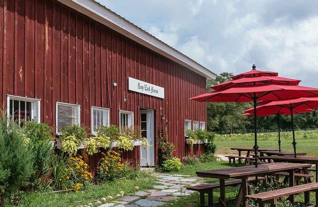 画像: レッドフラワーは創設当初から多くの原料供給業者と連携しながら製品づくりに取り組んできた。マサチューセッツ州ボーンにある35エーカーのオーガニックファーム「ベイエンドファーム」は35品種の植物を栽培しており、「The 10,000」コレクションにビートを、ボディウォッシュやローションなどを展開する「Flowers Hold Life」コレクションにはラベンダーやキュウリを提供している