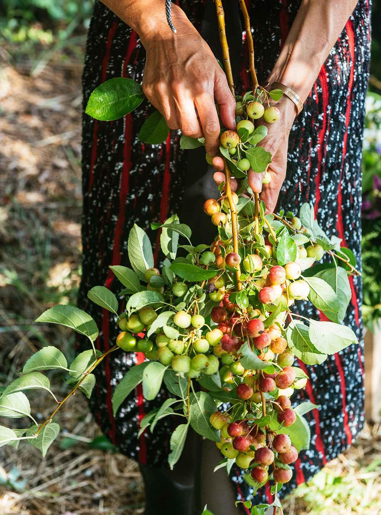 Images : 4番目の画像 - 「ホリスティック・スキンケアの エキスパートが追い求める 植物の新たな可能性」のアルバム - T JAPAN:The New York Times Style Magazine 公式サイト