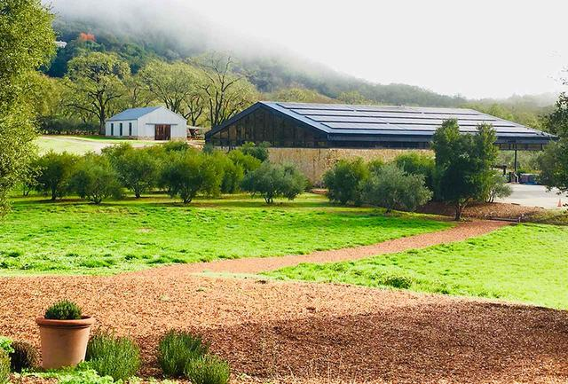 画像: ワイナリーは現在委託醸造を依頼している「メドロック・エイムズ」のもの。醸造の指示はすべて平林さんが行なっている COURTESY OF SIX CLOVES WINES