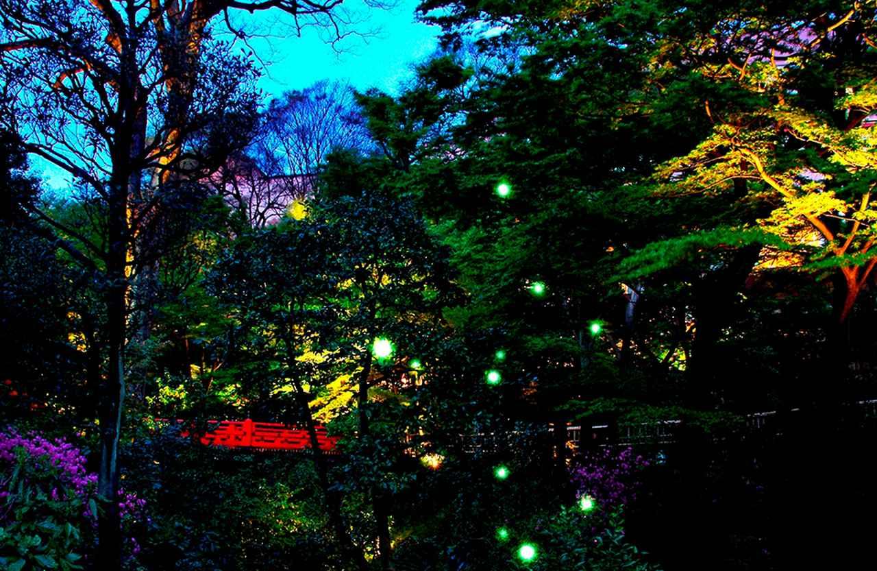 Images : 2番目の画像 - 「せきね きょうこ 連載 新・東京ホテル物語<Vol.45> 「ホテル椿山荘東京」」のアルバム - T JAPAN:The New York Times Style Magazine 公式サイト