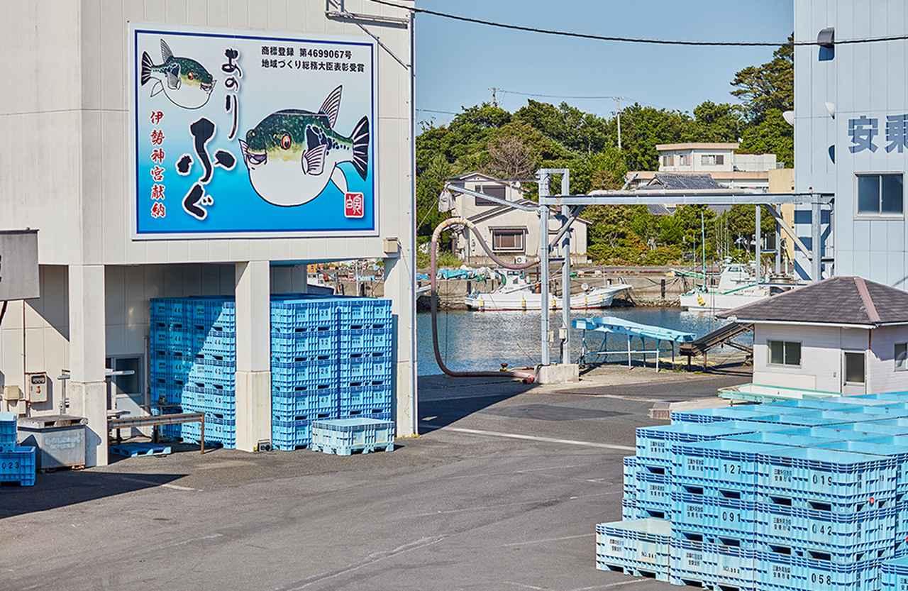Images : 6番目の画像 - 「「志摩観光ホテル」で堪能する 伊勢志摩の恵み Vol.3 持続可能な漁業を目指す 「あのりふぐ」生産者たち」のアルバム - T JAPAN:The New York Times Style Magazine 公式サイト