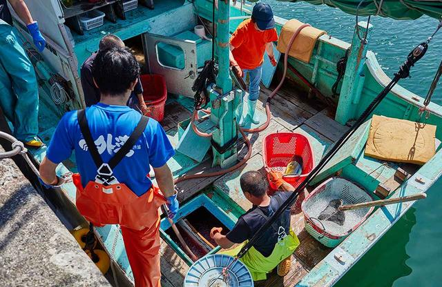 画像: 港に到着してすぐにカツオを船から引き上げる