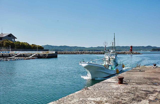 画像: 安乗漁港に戻ってきたカツオ漁の船