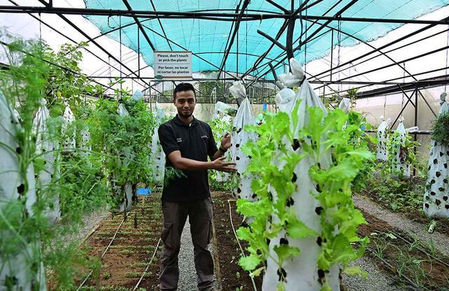 画像: リゾート敷地内をエコツアーで巡る。レストラン提供のグリーン・リーフも無農薬オーガニック栽培
