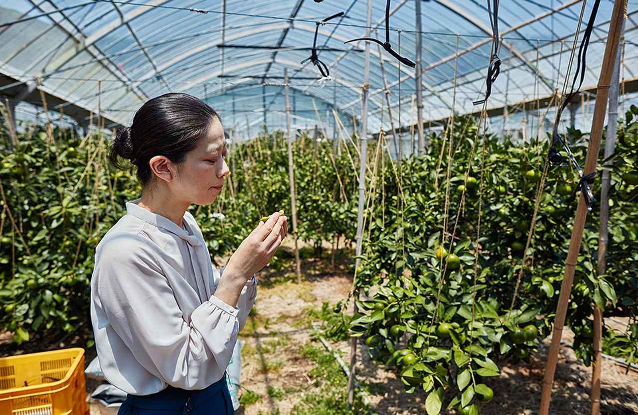 Images : 7番目の画像 - 「「志摩観光ホテル」で堪能する 伊勢志摩の恵み Vol.4 新しい味覚を生み出す、 シェフと地元柑橘農家の強力タッグ」のアルバム - T JAPAN:The New York Times Style Magazine 公式サイト