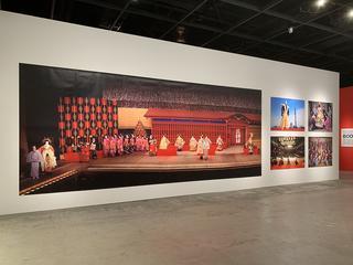 『篠山紀信展 写真力』|Gallery AaMo