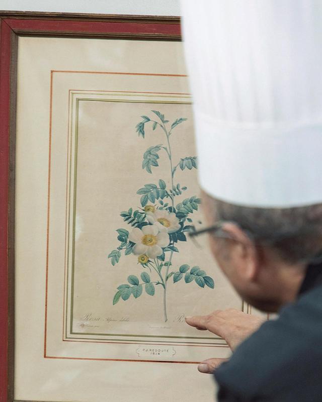 画像: ルドゥテのバラの絵。店名である月桂樹の絵も保有