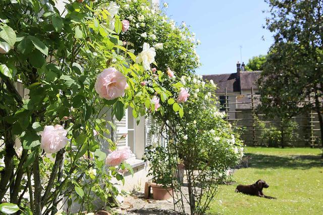 画像: パリ郊外、ブーロンマーロット村にある自宅で週末を過ごす。広々とした庭には、季節ごとに花々が咲き乱れて。本書では庭の風景や花あしらいの写真もふんだんに。また、その美意識を育てた背景にも迫る PHOTOGRAPH BY IKUO YAMASHITA