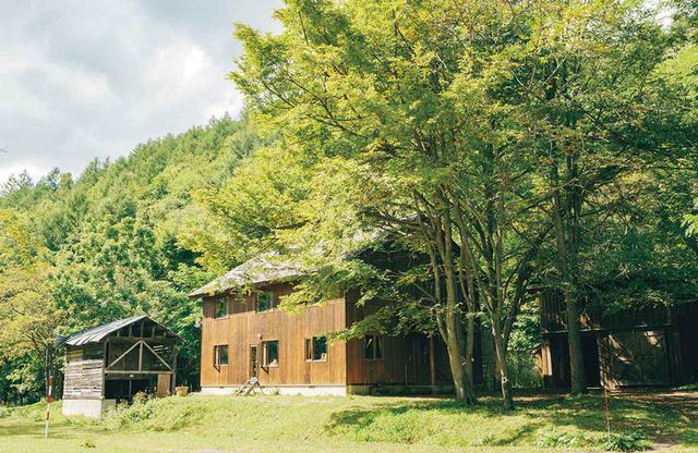 画像: 古屋だった家をDIYで住めるように。奥に薪窯のある小屋が見える