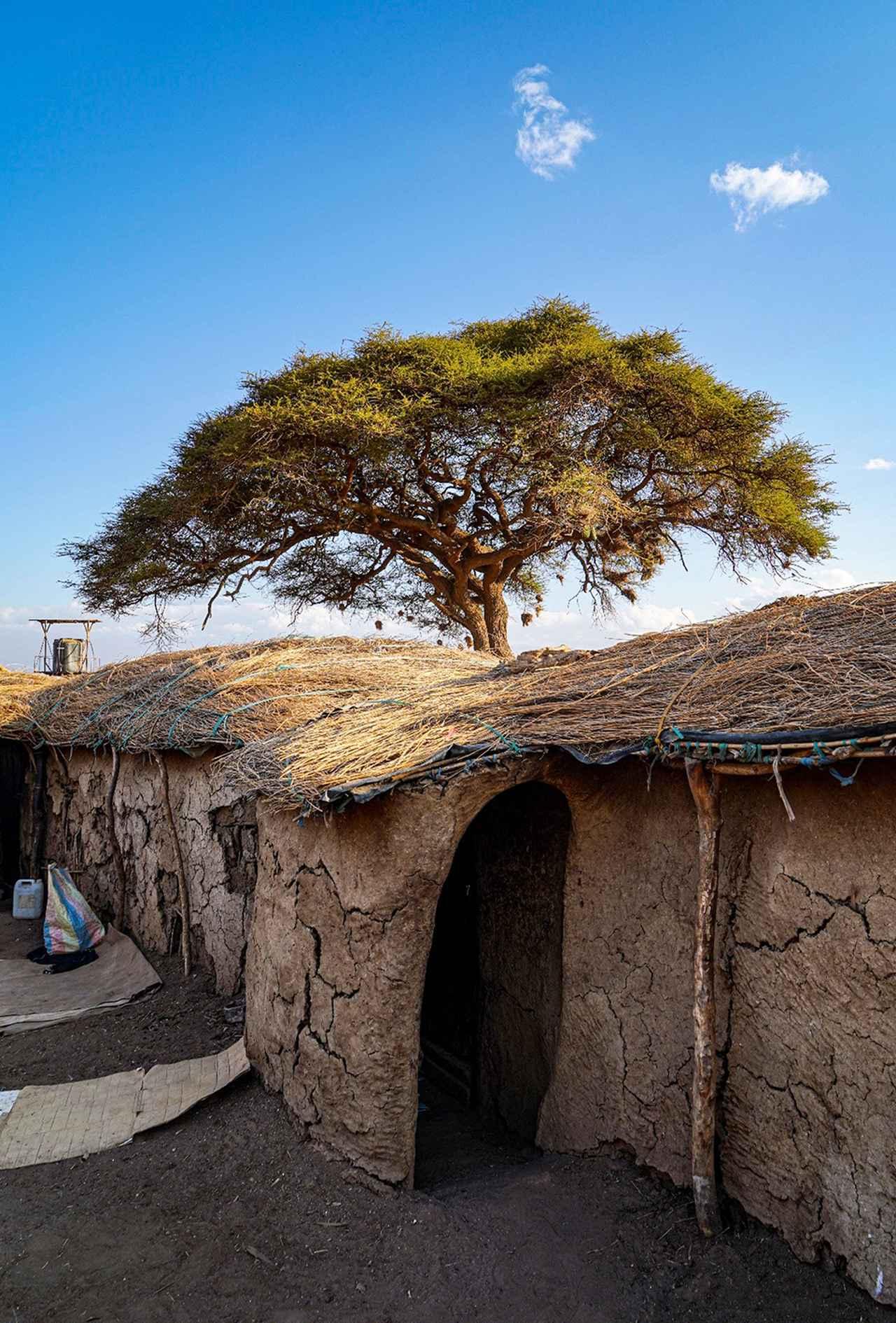 Images : マサイ族の住居